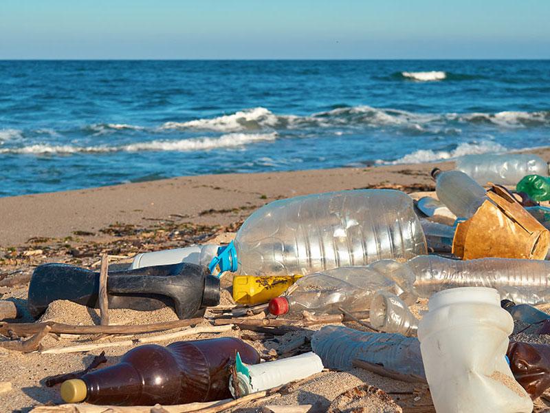 香港地球之友 - 香港沙灘清潔意見調查